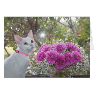 White Kitten and Pink Carnations Card