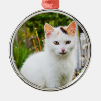 White Kitten Premium Ornament