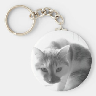 White Kitty Cat Black White Photo Key Chains