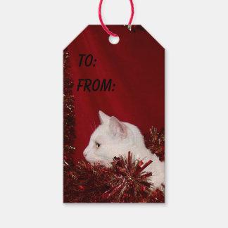 White kitty cat Christmas