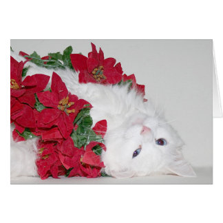 White kitty Christmas Greeting Card