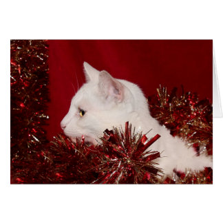White kitty Christmas Card
