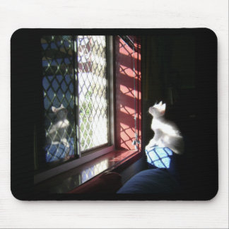 White kitty mouse pad