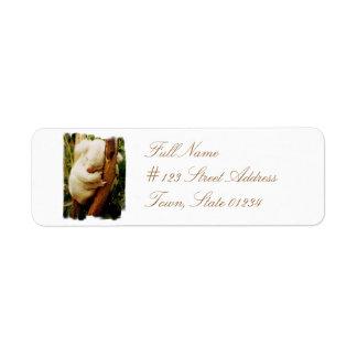 White Koala Bear Return Address Mailing Label Return Address Label