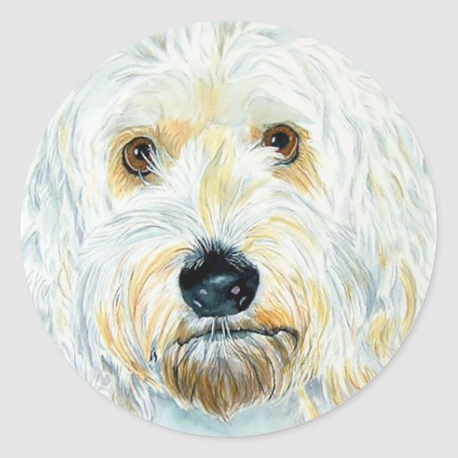 White Labradoodle Maggie Stickers