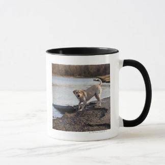 White Labrador near a lake Mug