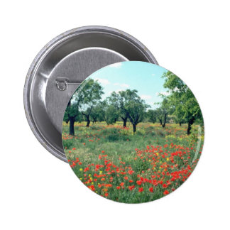 White Landscape of poppies and cork trees in Spain Pinback Buttons
