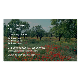 White Landscape of poppies and cork trees in Spain Business Card Template