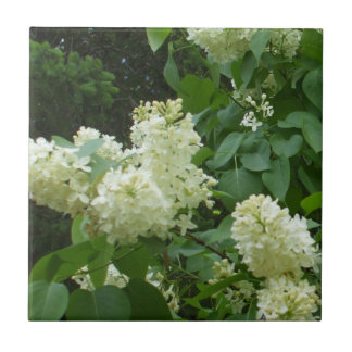 White Lilac Flowers Ceramic Tile