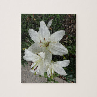 White Lilly Jigsaw Puzzle