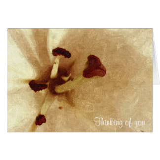 White Lilly Painting Like Sympathy Card