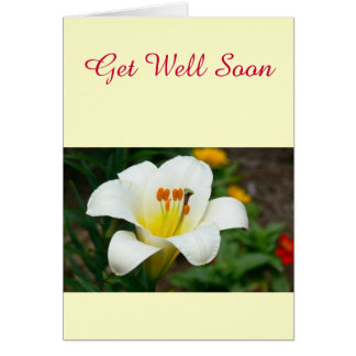 White Lily Cards
