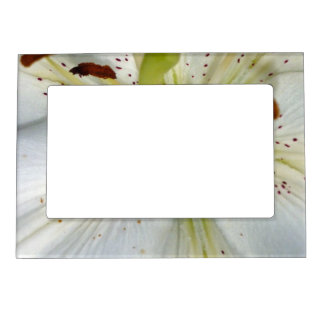 White Lily Close Up Magnetic Frame