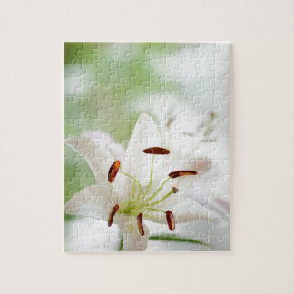 White Lily Flower Fully Open Jigsaw Puzzle