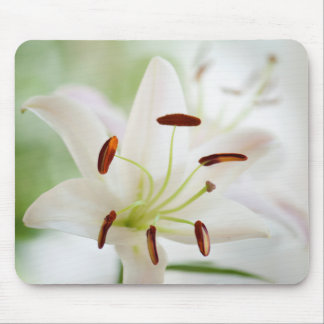 White Lily Flower Fully Open Mouse Pad