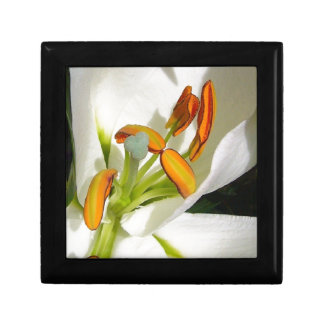 White Lily Small Square Gift Box