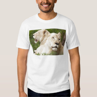White Lionesses T Shirts
