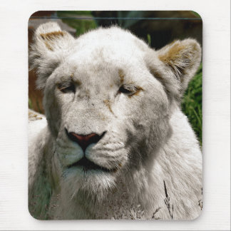WHITE LIONS MOUSE PAD