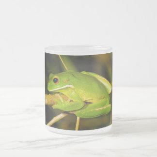 White Lipped Tree Frog Litoria Infrafrenata Frosted Glass Mug