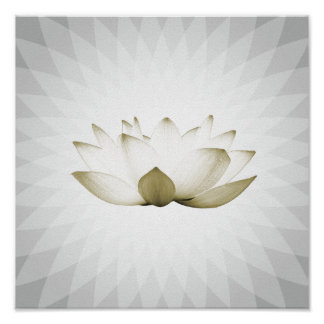 White Lotus Massage Therapy Yoga Training Poster