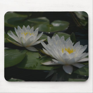 White Lotus Waterlilies Lily Pads Mouse Pad