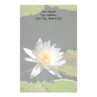 White Lotus Waterlily Flower Stationery