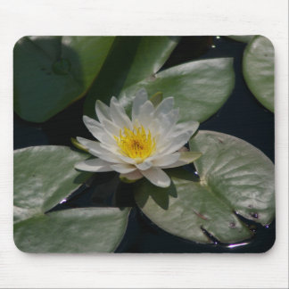 White Lotus Waterlily Lily Pads Mouse Pad