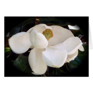 White Magnolia Blossom Mother's Day Card