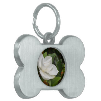White Magnolia Pet Name Tag