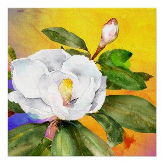 White magnolia watercolor by Ozias