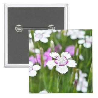 White Maiden Pinks Pin