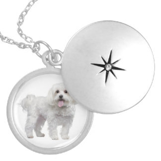 White Maltese Puppy Dog Pendant Necklace