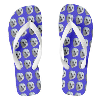 White Meerkat Faces On Blue Background, Thongs