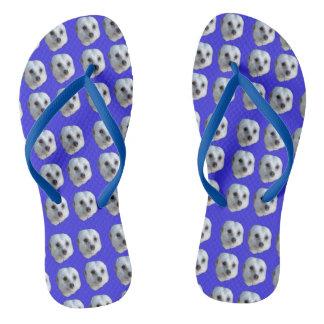White Meerkat Faces On Blue, Thongs
