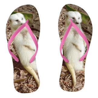 White Meerkat, Thongs