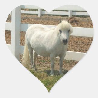 White miniature horse stickers