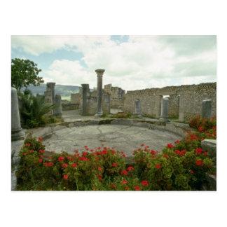 White Morocco, Roman ruin flowers Postcard