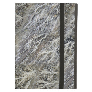 White Moss on Driftwood iPad Air Covers