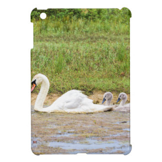 White mother swan swimming in line with cygnets case for the iPad mini