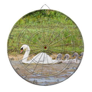 White mother swan swimming in line with cygnets dartboard