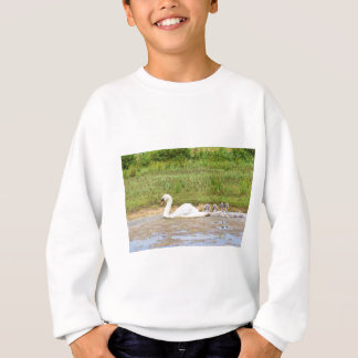 White mother swan swimming in line with cygnets sweatshirt