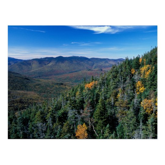 White Mountain N.F., NH. The view from near Postcard