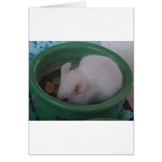 White Mouse in Food Bowl Greeting Card