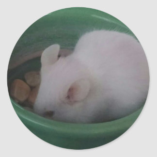 White Mouse in Food Bowl Round Sticker