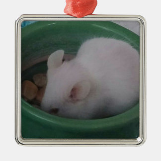White Mouse in Food Bowl Silver-Colored Square Decoration