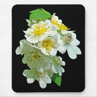 White Multiflora Roses Wildflower Mouse Pad