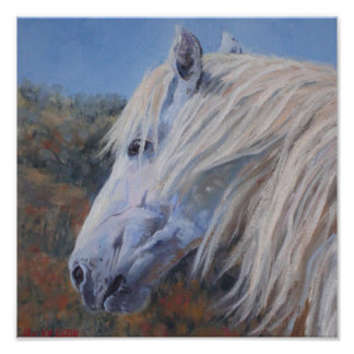 White Mustang Fine Art Print