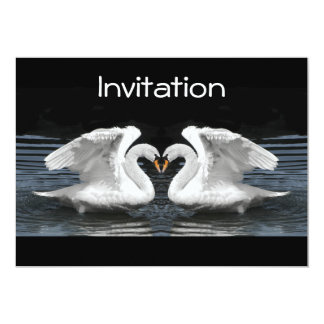 White Mute Swan Mirror Image Card