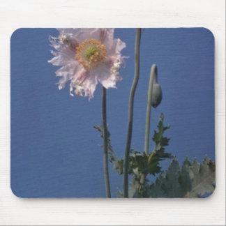 white Opium Poppy (Papaver Somniferum) flowers Mousepad