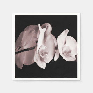White Orchid Flower Black Background Abstract Disposable Serviette